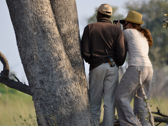 Carlien Parsons - game-viewing on a walking safari in the Okavango Delta